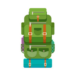 the backpack of a tourist vector image