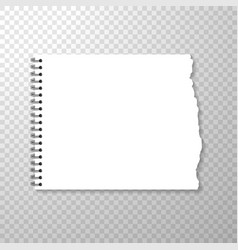 Torn piece of squared paper from spiral bound vector