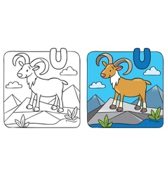 Coloring picture of funny urial Alphabet U vector