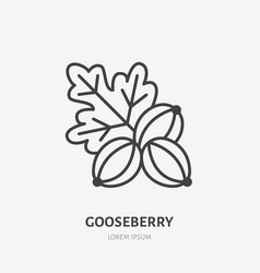 Gooseberry flat line icon forest berry sign vector