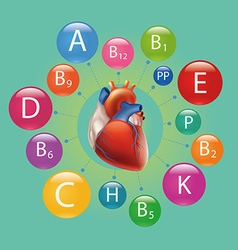 Heart and vitamins vector