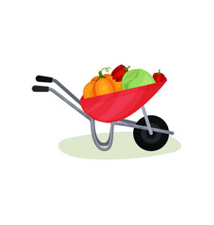 natural vegetables in red wheelbarrow pumpkin vector image