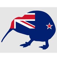 New Zealand kiwi vector