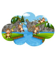 set of monkeys in nature scene vector image