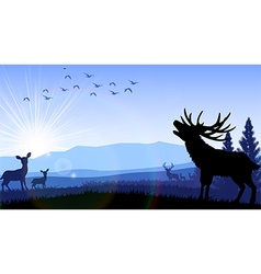 Silhouette of deer and kangaroo standing vector
