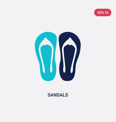 Two color sandals icon from asian concept vector