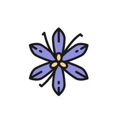 vanilla saffron spice flat color line icon vector image