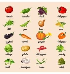 Vegetables from garden set vector