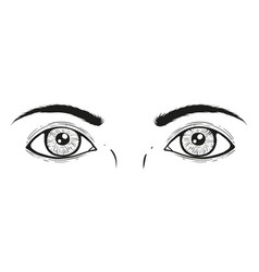 a eyes vector image