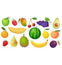 cartoon fruits mango fruit melon slice vector image