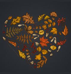 heart design on dark background with rowan rowan vector image