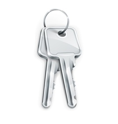 Sheaf of silver keys vector
