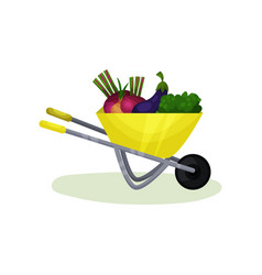 yellow wheelbarrow with ripe vegetables healthy vector image