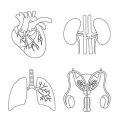 Anatomy and organ icon set vector