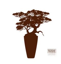 Bonsai tree vintage style vector