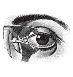 Eyeball vintage vector
