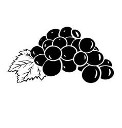 grape icon black and white vector image