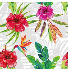 hibiscus bird paradise leaves gray and white vector image