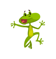 little funny jumping frog green cute amfibian vector image