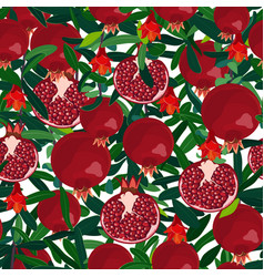 Pomegranate tree seamless pattern branches with vector