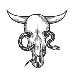 Snake in cow skull sketch engraving vector