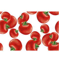 tomato seamless pattern on white vector image