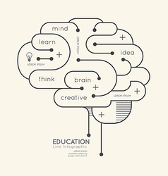Flat linear Infographic Education Outline Brain vector image