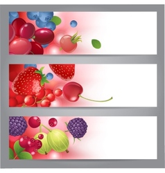banners with berries vector image vector image