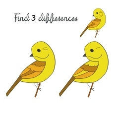 Find differences yellowhammer bird vector