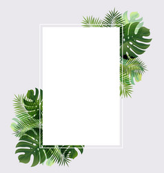 banner with leaf palm vector image