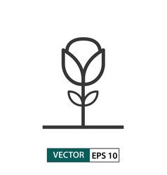 flower rose icon outline style eps 10 vector image