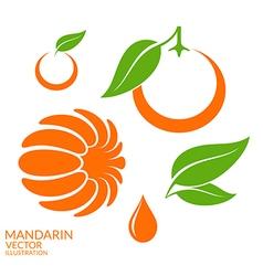 mandarin set vector image