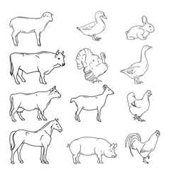 Meat symbols hand drawn farm animals vintage vector