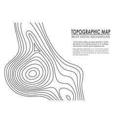 Topographic map contour background line map with vector