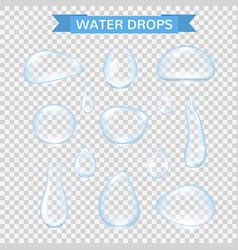 water drops realistic water rain drops set vector image