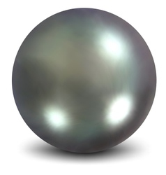 Nacreous pearls vector image
