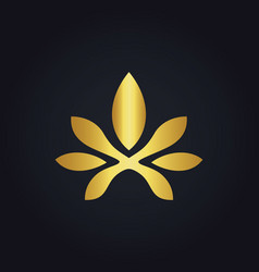 abstract flower beauty gold logo vector image