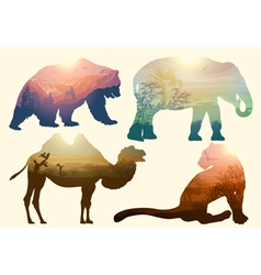 bear elephant camel and leopard for your design wi vector image