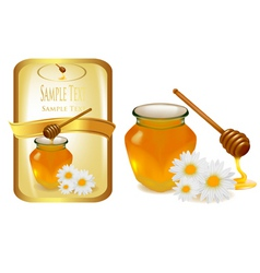 Honey with flowers vector
