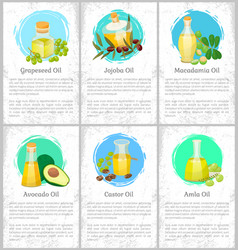 Natural oils for hair care organic cosmetics vector