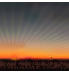 Sunset grassland vector