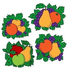Vintage colorful fruit compositions vector image