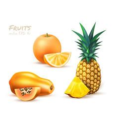 pineapple papaya orange realistic exotic fruit set vector image
