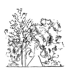 trees and lamps along the vector image vector image