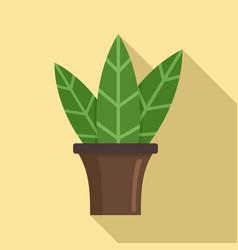 big leaf houseplant icon flat style vector image