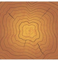 Bright tree rings square realistic vector image