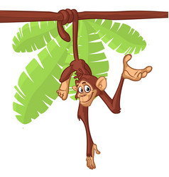 Cartoon cute monkey chimpanzee hanging vector