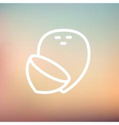 Coconut thin line icon vector