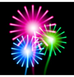 Color fireworks on black background vector