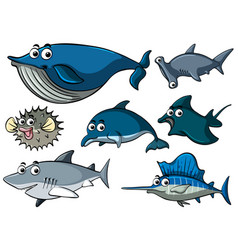 Different types of sharks vector